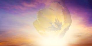 Licht van hemel De achtergrond van de godsdienst Jesus in de hemel stock foto's