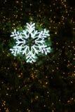 Licht van sneeuwvlok op Kerstmisboom wordt verfraaid, donkere achtergrond die Stock Foto