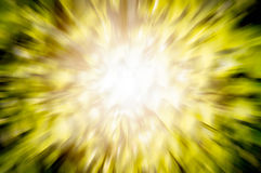 Licht van zon het busting door bladeren van boom. Royalty-vrije Stock Fotografie