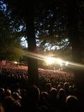 Licht vor Tausenden von Leuten im Wald Lizenzfreies Stockfoto