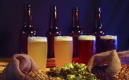 Licht zum dunkles Bier-Regenbogen lizenzfreie stockbilder