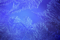 Lichtblauw ijzig patroon bij de winter Stock Foto's
