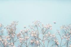 Lichtblauwe bloemengrens als achtergrond met witte Gypsophila-bloemen Baby` s-adem bloemen stock fotografie