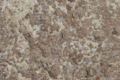 Lichtbruine concrete plak royalty-vrije stock foto