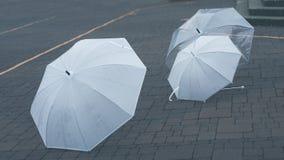 Lichtdurchlässig Trieb-durch Regenschirm auf dem Boden stockfoto