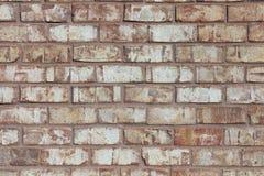 Lichte Bakstenen muur Royalty-vrije Stock Fotografie