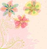 Lichte Bloemen Royalty-vrije Stock Foto