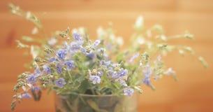 Lichte gebiedsbloemen in vaas royalty-vrije stock afbeelding