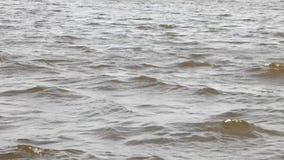 Lichte golven op de oppervlakte van de rivier in lichte winden stock footage