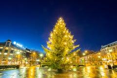 Lichte Kerstboom Stock Foto