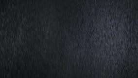 Lichte motregenregen looping U kunt om het even welk kanaal gebruiken alpha-, of gebruikt zacht licht/bekleding/voegt het mengen  stock video