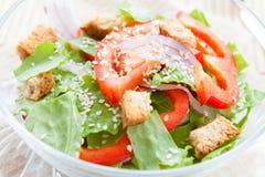 Lichte plantaardige salade met croutons en sesam Royalty-vrije Stock Fotografie