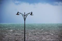 Lichte Polen bij het Strand op een Stormachtige Dag Stock Fotografie