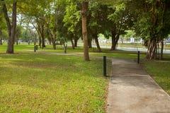 Lichte pool met voetpad in het park Royalty-vrije Stock Foto