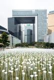 Lichte Rose Garden, door Pancom (Zuidkoreaans Creatief Bureau) Stock Foto