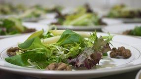 Lichte salade Royalty-vrije Stock Afbeeldingen