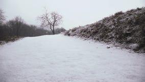 Lichte sneeuwval in langzame motie in de winter in Oostenrijk stock videobeelden