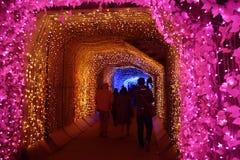 Lichte tunnel stock foto's