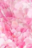 Lichte zachte roze textielbloemblaadjesachtergrond Stock Afbeelding
