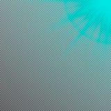 Lichteffekt der Vektorsonne Blendenflecklicht vektor abbildung