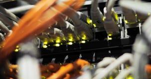 Lichten en verbindingen op netwerkserver geladen netwerkmedia convertors en ethernet schakelaars stock video