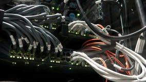 Lichten en verbindingen op netwerkserver Werkende gegevensservers met opvlammende LEIDENE lichten Schakelaar rg-45 stock footage