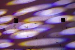 Lichten op een muur royalty-vrije stock fotografie