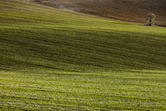 Lichten van Andalucia Stock Afbeeldingen