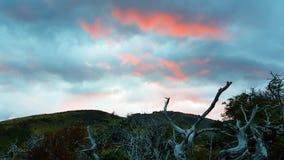 Lichten van de zonsondergang in Patagonië, Torres del Paine National Park, Chili stock afbeelding