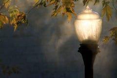 Lichten van nieuwe dag stock afbeeldingen