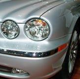 Lichten van stlye. Royalty-vrije Stock Foto's
