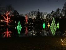 Lichter auf dem See Stockbilder
