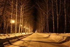 Lichter belichten die Straße Stockbild