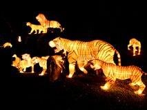Lichter und Laternenfestival in Singapur Lizenzfreies Stockbild