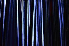 Lichtgevend bamboebosje, een nacht van Kyoto Royalty-vrije Stock Fotografie