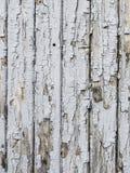 Lichtgrijze houten achtergrond royalty-vrije stock afbeeldingen