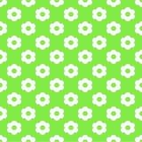 Lichtgroen Naadloos Patroon met Bloemen Stock Afbeelding