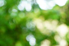 Lichtgroene en witte bokeh Stock Foto's