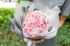 Lichtrose Hydrangea hortensia Jong meisje die een bloemstuk houden Mooi de zomerboeket Het concept een bloemwinkel Stock Afbeelding