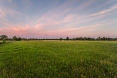 Lichtung bei Sonnenuntergang Stockfotos