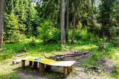 Lichtung im Wald mit einem Kamin und einem Parkplatz lizenzfreies stockfoto