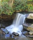 Lichtungs-Nebenfluss-Wasserfall Lizenzfreie Stockfotos
