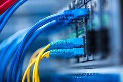 Lichtwellenleiter schlossen an Optikhäfen und Netzkabel an lizenzfreies stockfoto