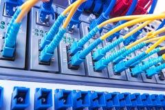 Lichtwellenleiter schlossen an Optikhäfen und UTP-Netzkabel an stockbild
