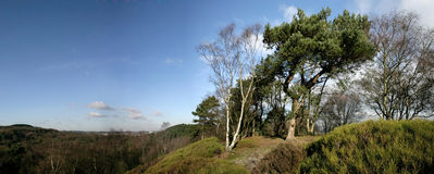 Lickey hills Stock Images