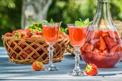 Licor caseiro da morango servido no jardim Imagem de Stock