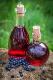 Licor hecho en casa en una botella con los arándanos y el alcohol fotos de archivo
