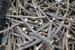 Licorice root sticks Stock Photography