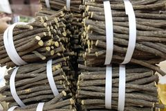 Licorice root sticks Royalty Free Stock Photo
