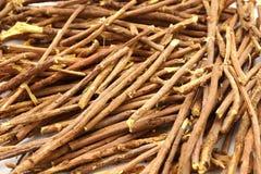 Licorice root. On white background stock image